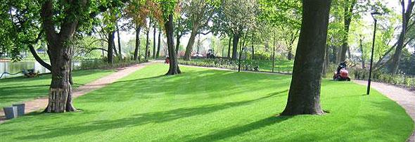 Gras leggen 3